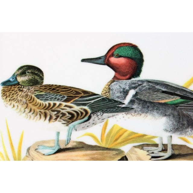 "John James Audubon ""Green Winged Teal"" Coasters - Set of 4 - Image 5 of 7"