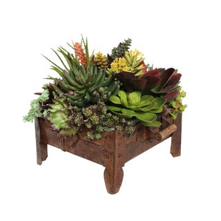 Vintage Iron Tray with Succulents