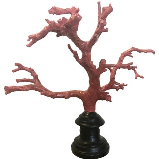 Small Red Coral on Stand