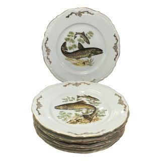 Bavarian Winterling China Fish Pattern Plates - 7
