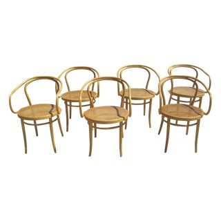 Thonet Style Bentwood Caned Armchairs - Set of 6