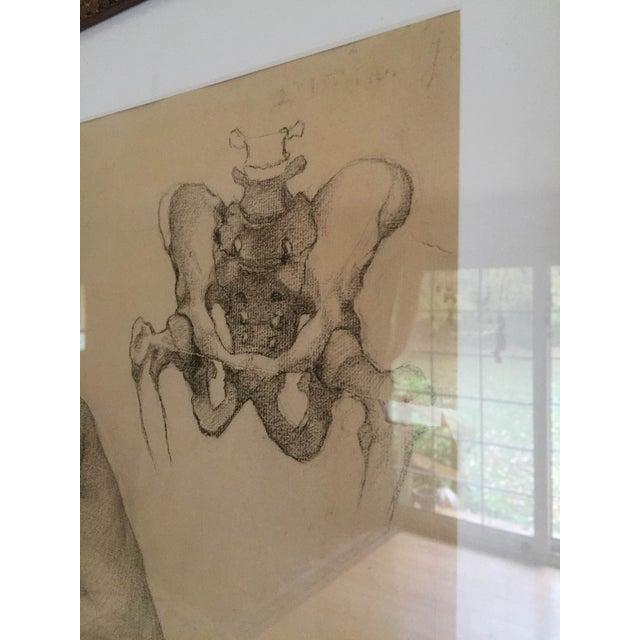 Rare Original Victorian Framed Figure Drawing - Image 6 of 7