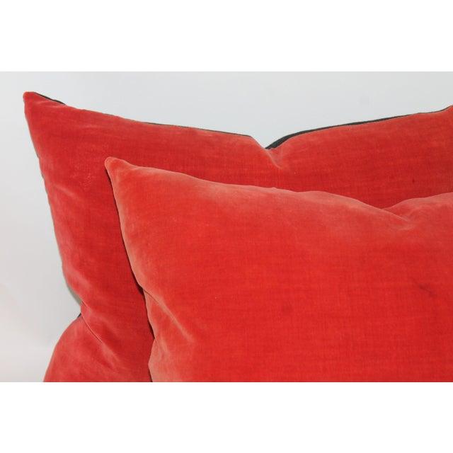Orange Velvet Pillows- A Pair Chairish