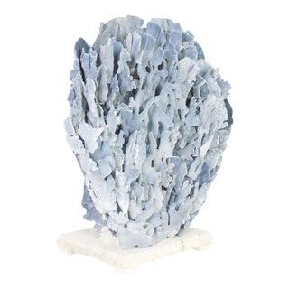 Large and Impressive Blue Coral Sculpture