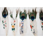 Image of Painted Peacock Feathers - Set of 14