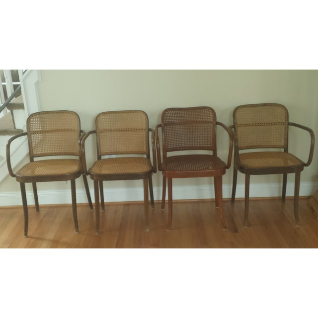 Vintage Stendig Thonet Bentwood Cane Chairs - Set of 4 - Image 3 of 11