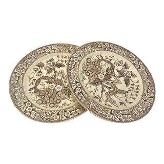 Brown & White Wedgwood Plates - A Pair