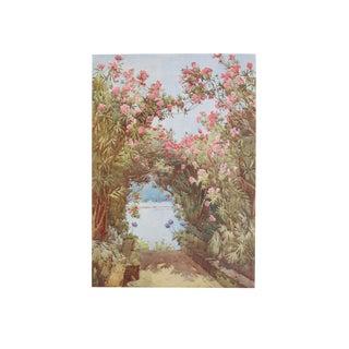 1905 Ella du Cane Print, Oleanders, Lago Maggiore
