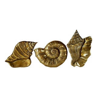 Brass Seashell Wall Accents - Set of 3