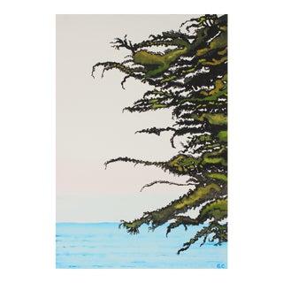 """""""Pacific Cypress Sunrise"""" Sea Ranch, California Landscape"""