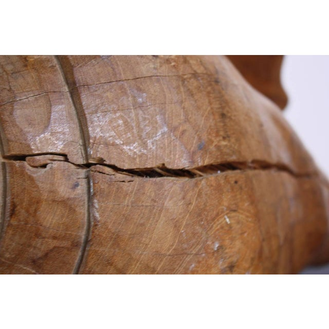 Image of 1960s Hand-Carved Wooden Conch