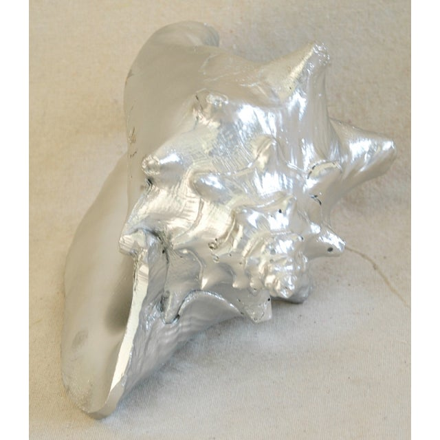 Large Silver Gilt Conch Seashell - Image 10 of 10