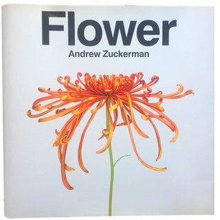 Flower by Andrew Zuckerman