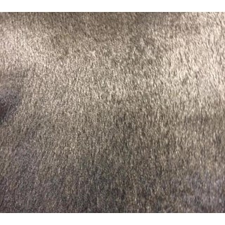 Kravet Couture Brown Fur