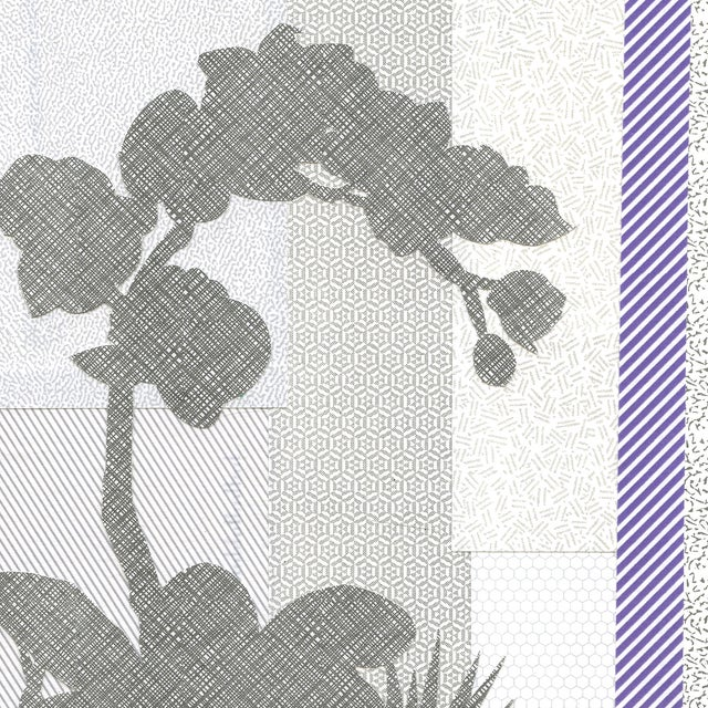 Image of Office Orchid 6 Collage