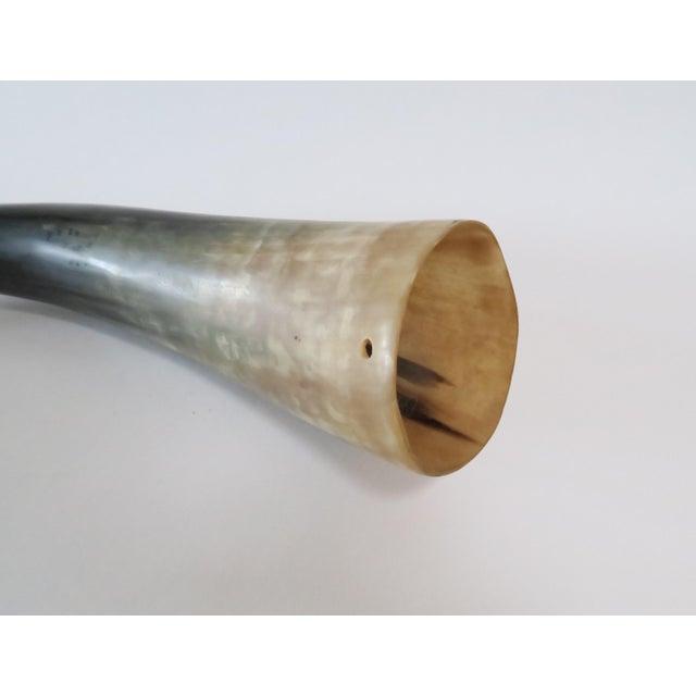 Image of Vintage Horn Shofar
