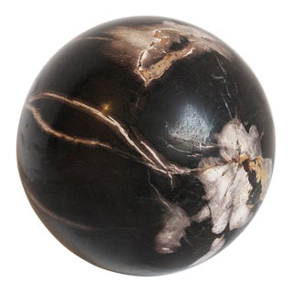 Small Petrified Wood Sphere