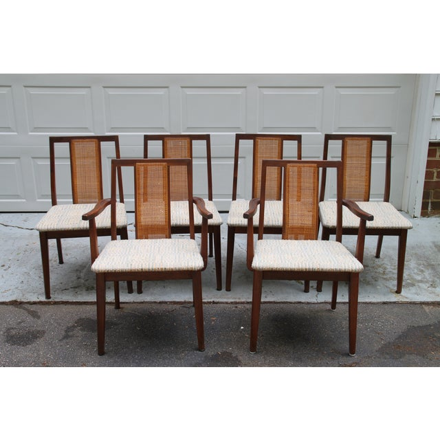 Image of Mid-Century Hibriten Cane Back Chairs - Set of 6
