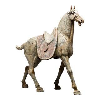 Pair of Tang Horses