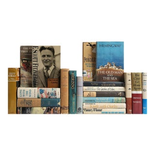 American Literature Classic Books - Set of 20