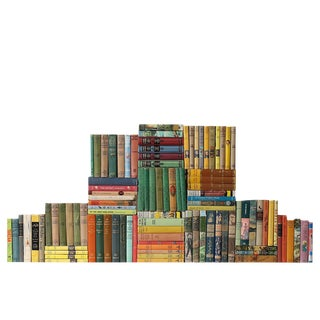 Curated Children Classic Books - Set of 100