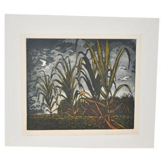 'Sugar Cane' Aquatint Etching