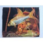 Image of Vintage Coy Fish Original Pastel Framed