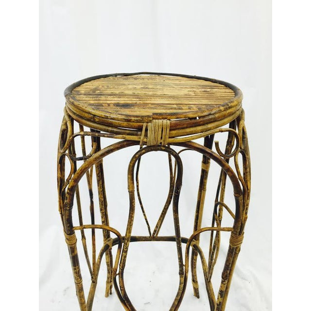 Bamboo Plant On Table: Vintage Bamboo Plant Stand Table