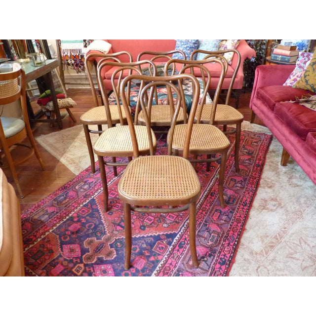Vintage Bentwood and Cane Cafe Dining Chairs - Set of 6 - Image 2 of 10