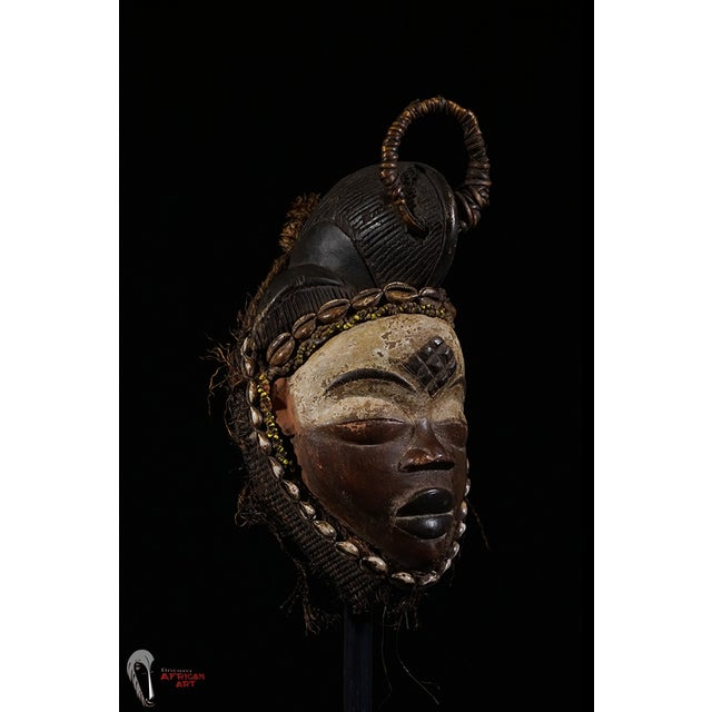 Punu African Tribal Mask from Gabon - Image 7 of 8