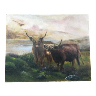 Scottish Highland Cattle Painting