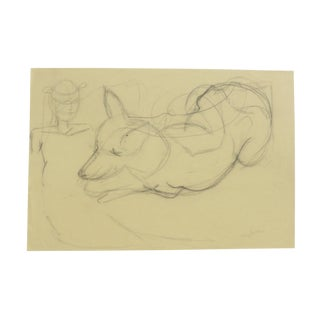 Charcoal Sketch of a Dog by Martha Holden