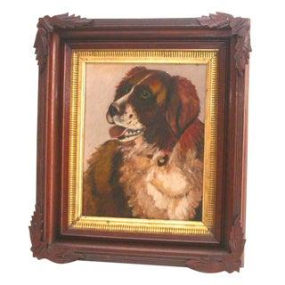 Portrait of a Saint Bernard