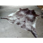 "Image of Brown & White Cowhide Rug - 6'6"" X 7'"