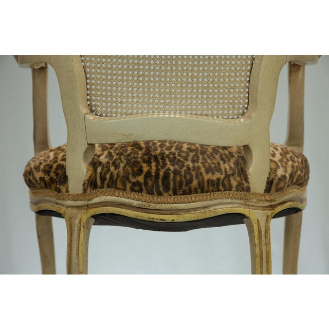 Louis XVI Fauteuil Leopard Print Chairs - A Pair - Image 5 of 5