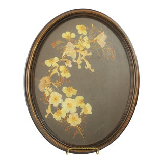 Vintage Framed Pressed Flowers