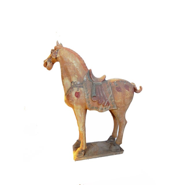 Tang Dynasty-Style Standing Horses - A Pair - Image 3 of 8