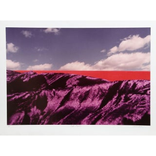 "Michael DeCamp, ""Purple Majesty,"" Photograph"