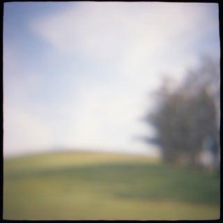 """Meadow Edge"" Photography"