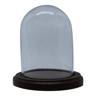 Vintage Display Cloche With Wooden Base