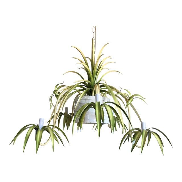 Italian Spider Plant Chandelier - Image 1 of 9