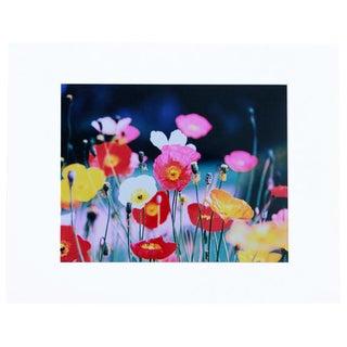 """""""Flower Power"""" Photograph"""