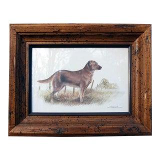 Vintage Sarreid LTD Framed Hunting Dog Print