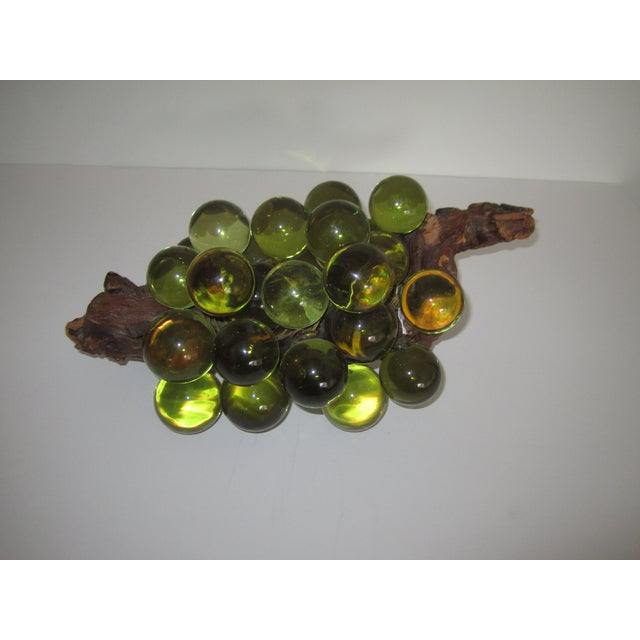 Image of Green Resin Grapes on the Vine