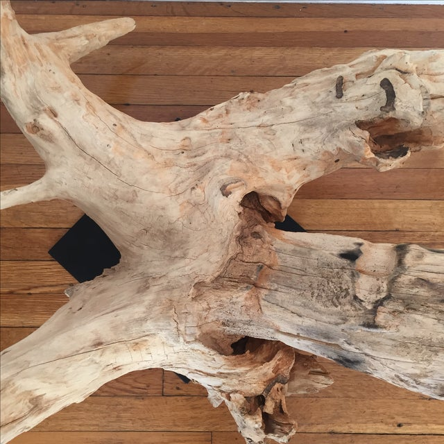HD Buttercup Oversized Driftwood on Stand - Image 8 of 9