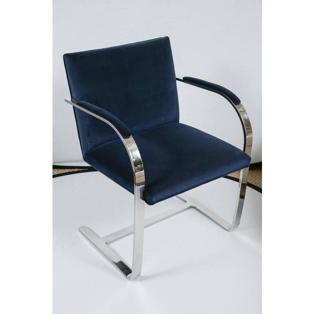 Image of Brno Flat Bar Chairs in Navy Velvet, Set of Six