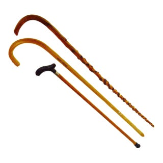 Vintage Wooden Walking Sticks - Set of 3