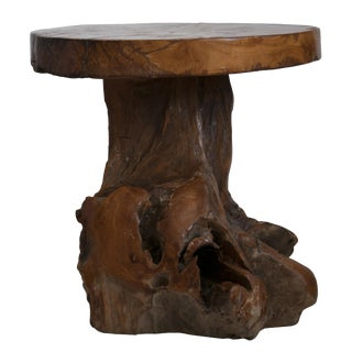Indonesian Teak Root Stool