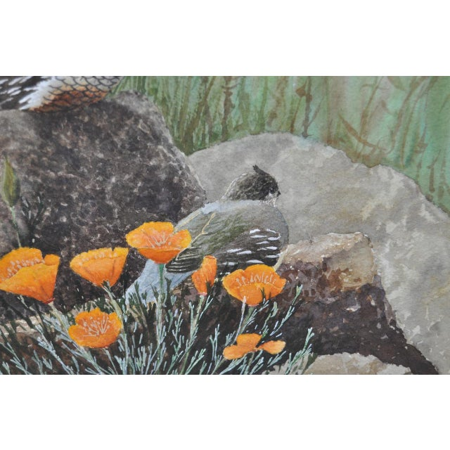 Gerald Petitt California Quail & Poppies Watercolor c.1970s - Image 5 of 11