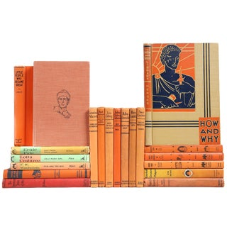 Children's Biographical Books - Set of 20
